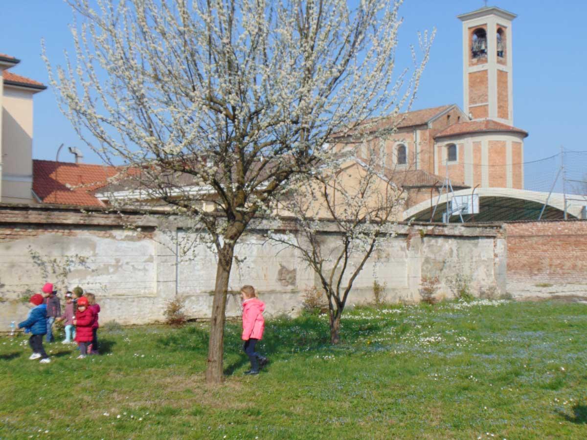 Il leprotto alla Materna Buzzoni - Scuola Materna Peschiera Borromeo