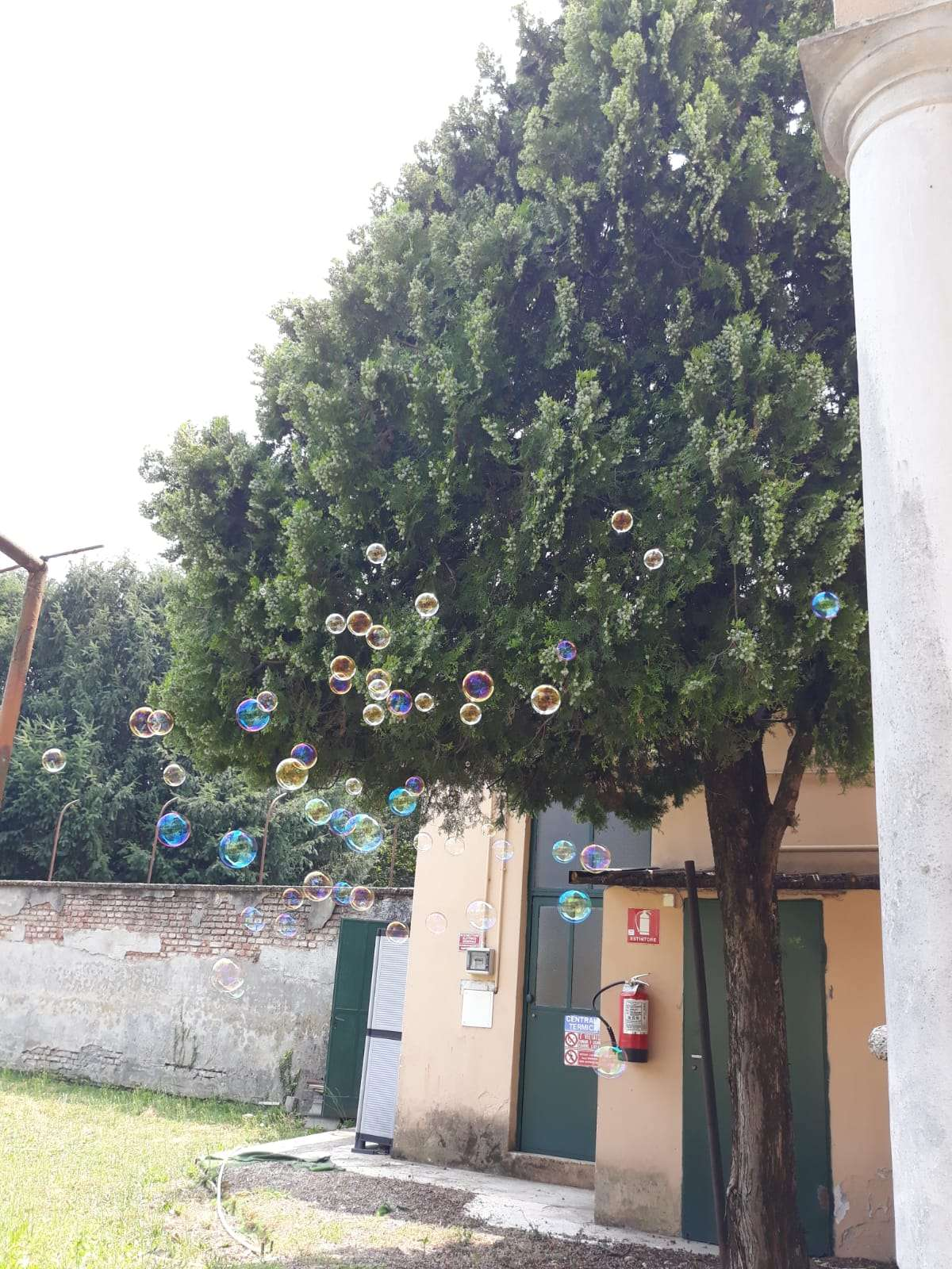 IMG 20190803 WA0039 - Scuola Materna Peschiera Borromeo